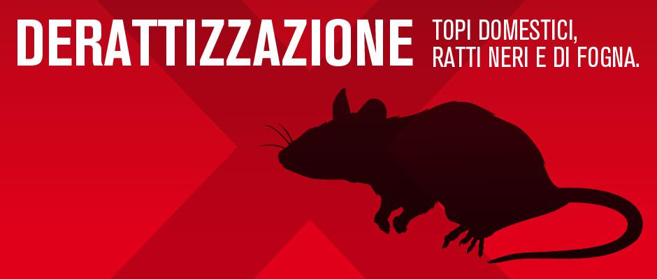 Disinfestazione topi domestici e ratti di fogna