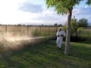 Disinfestazione zanzare con lancia nebulizzante