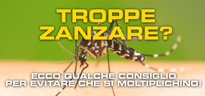 Troppe zanzare e pappataci come evitare che si moltiplichino